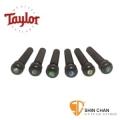 taylor吉他弦釘 ▻ Taylor 民謠吉他弦釘 黑檀木+珍珠貝殼圓點 音色升級 型號: 80110【Taylor吉他原廠/Bridge Pins】