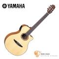 古典吉他►山葉YAMAHA NTX900FM 可插電單板古典吉他【可插電古典吉他/NTX-900FM】