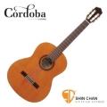 古典吉他 ► Cordoba 美國品牌 C7 單板古典吉他 附琴袋 木踏板 擦琴布【C-7】