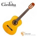 Cordoba 美國品牌 C1 1/2古典吉他 附琴袋 木踏板 擦琴布【1/2琴身/C-1/弦長:58cm/34吋】