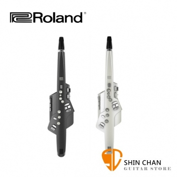 Roland 樂蘭 AE-10 / AE-10G 數位薩克斯風/電子吹管 原廠公司貨 一年保固 附中文說明書【電薩克斯風/AE10/AE10G】電吹管