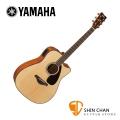 Yamaha 山葉 FGX800C 可插電單板民謠吉他 單板雲杉木面板/奧古曼木側背板 D桶身【木吉他】