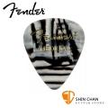 Fender 351 ZEBRA 彈片 PICK【一組12片/ 尺寸:Medium (厚度: 0.7mm) / 美製】