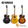 YAMAHA 山葉 CPX600 可插電 41吋民謠吉他 附琴袋/移調夾/背帶/導線/彈片【電木吉他/CPX-600】