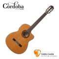 Cordoba 美國品牌 C7-CE 單板可插電古典吉他 C7CE 附琴袋 木踏板 擦琴布 導線