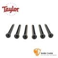 taylor吉他弦釘 ▻ Taylor 標準款民謠吉他弦釘 黑色 型號: 80120【Taylor吉他原廠/Bridge Pins】