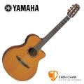 YAMAHA NTX700C 可插電單板古典吉他【可插電古典吉他/NTX-700】