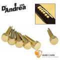 D'Andrea 美國黃銅製 Tone Pins Brass 金色吉他弦銓(聲音加強顆粒/清淅度) Pin/木吉他弦釘TP1B