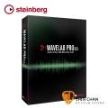 Steinberg WaveLab Pro 9.5 母帶後製音頻編輯軟體 下載版 附 USB-eLicenser (USB Key 啟動鑰匙)【Yamaha 總代理/原廠公司貨】
