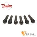 Taylor 黑檀木民謠吉他弦釘 音色升級 型號: 80100【Taylor吉他原廠/Bridge Pins】7250