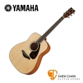 Yamaha 山葉 FG800M 霧面單板民謠吉他 單板雲杉木面板/奧古曼木側背板 D桶身【木吉他】