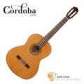 Cordoba 美國品牌 C3M 單板古典吉他 附琴袋 木踏板